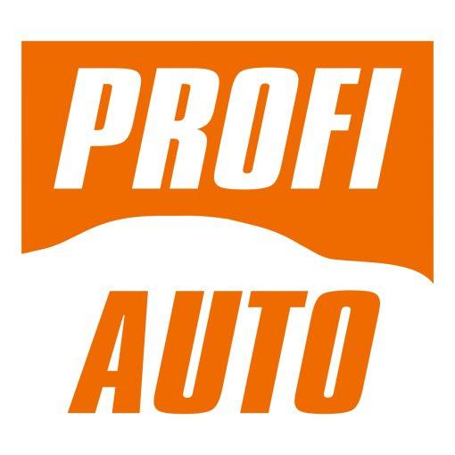 profi auto logo Warsztat samochodowy Rzeszów Daytona ul. Krakowska Mechanika pojazdowa Rzeszów